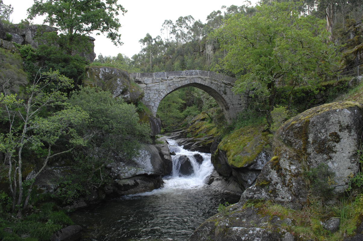 Ponte do Almofrei - Vista frontal