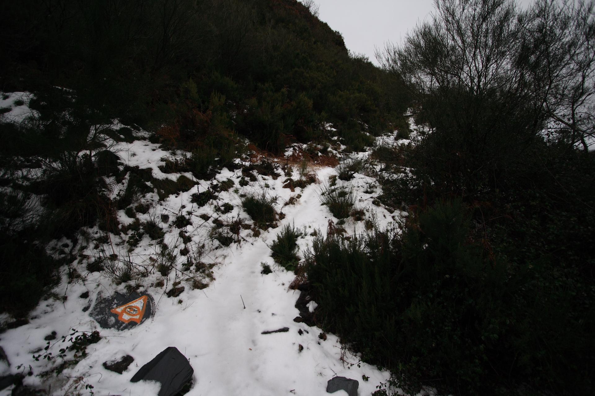 Sendeiro nevado