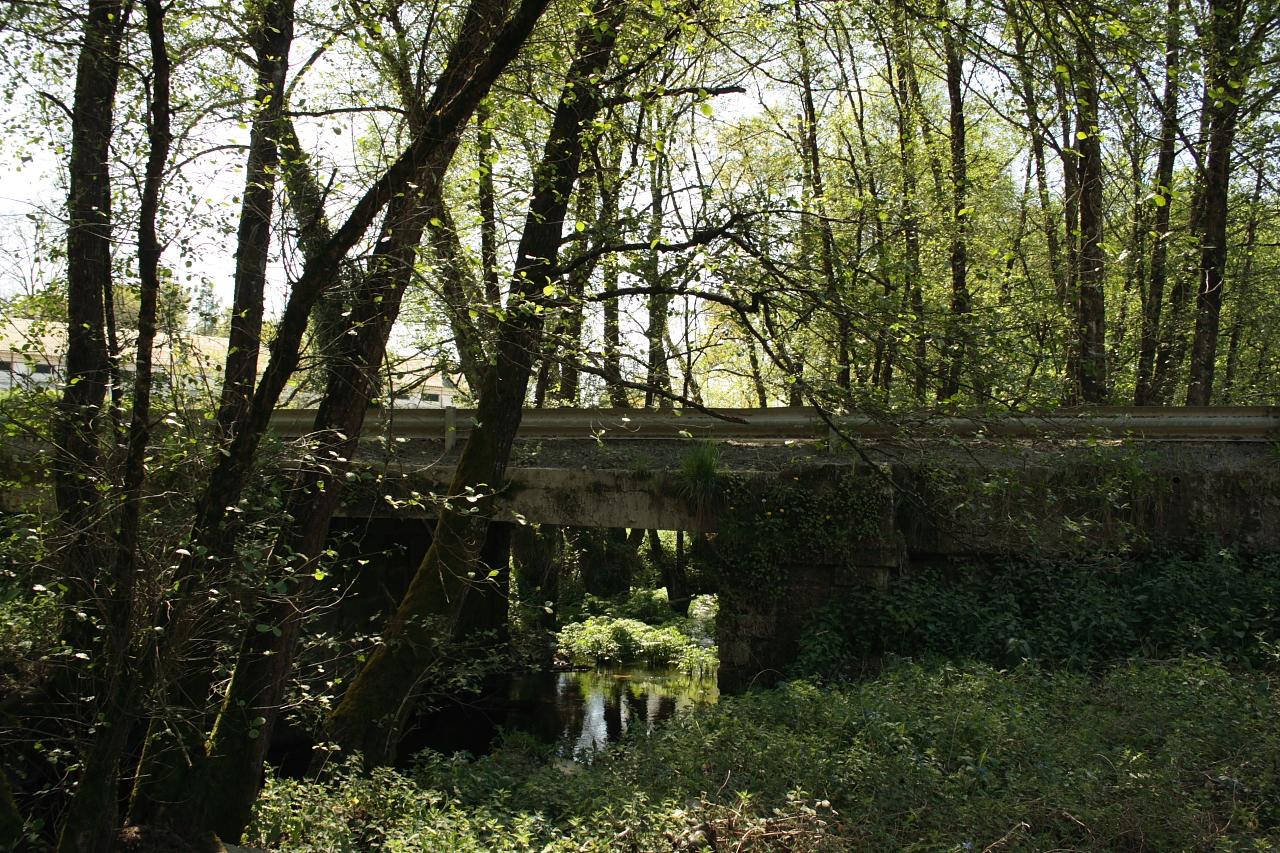 A ponte desde as leiras