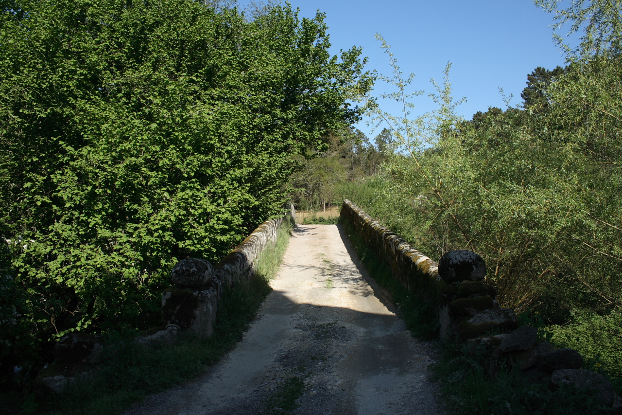 Calzada da ponte (1)