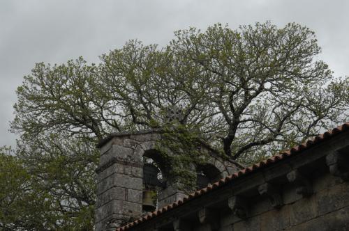 23 Igrexa de Moldes e sepulcro de A. Losada Diéguez