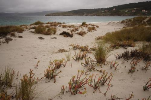 12 Praia de Laxe