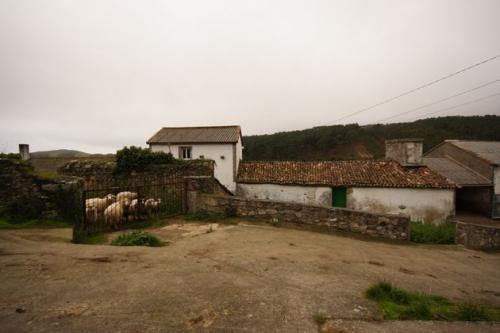 15 Antiga casa - escola de Vilela de Nemiña